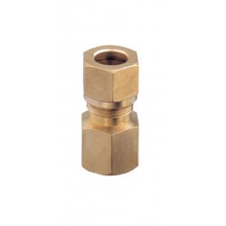 Hembra Recta Fitting 3 / 8x10