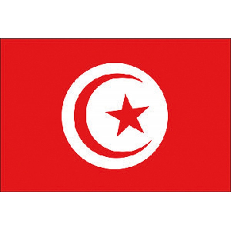 Bandera Nautica de Tunez 20 X 30 cm